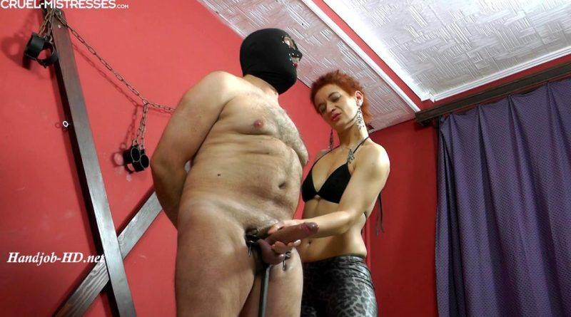 Huge cock in her hands – Cruel Handjobs