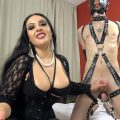 Ruined by the balls – Mistress Ezada Sinn