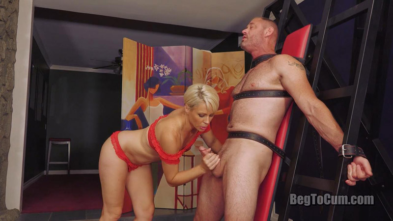 It's Just Me And The Cock Now – Beg To Cum – Helena Locke
