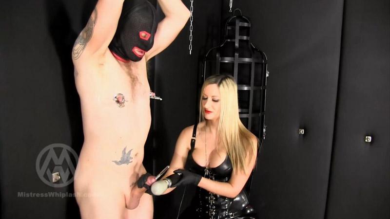 Chastity slave's urethra & nipples stretched WL1443 – Mistress Nikki Whiplash