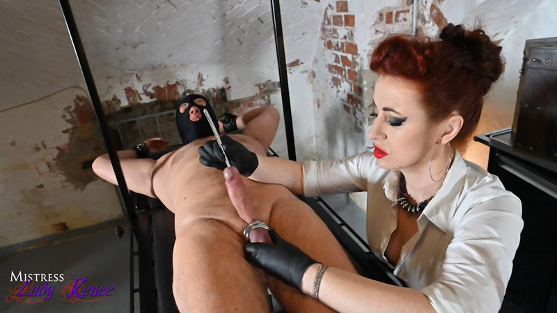 Something to penetrate – Mistress Lady Renee