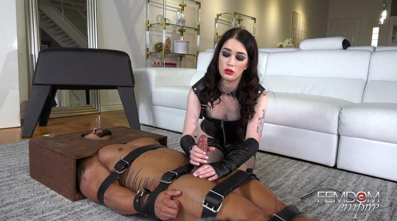 Prolonged Edging Program – Femdom Empire – Evelyn Claire