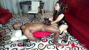 FemDom Handjob Big Dick Draining – Krystal Davis