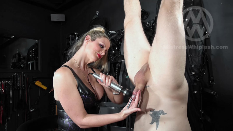 Huge sounding orgasm in inverted suspension for Nikki Whiplash's slave WL1547 – Mistress Nikki Whiplash