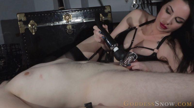 Locked Tease – Goddess Alexandra Snow